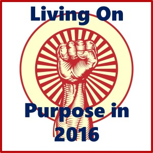 Living On Purpose in 2016